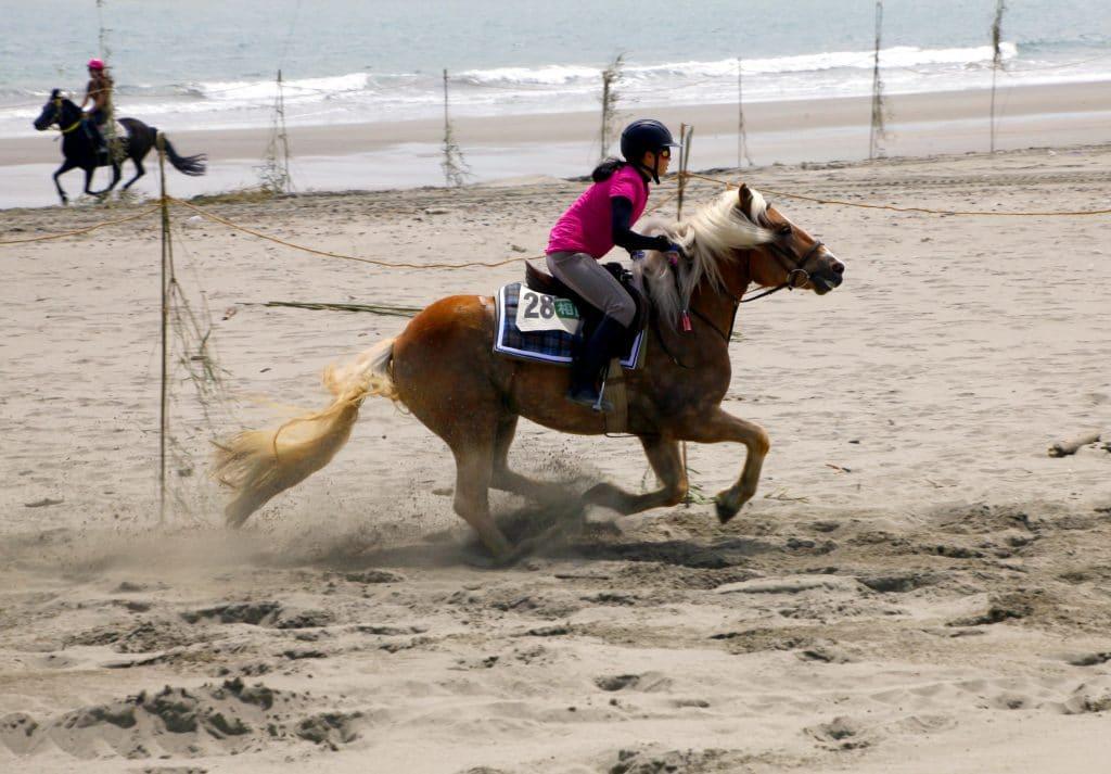 砂浜 競馬