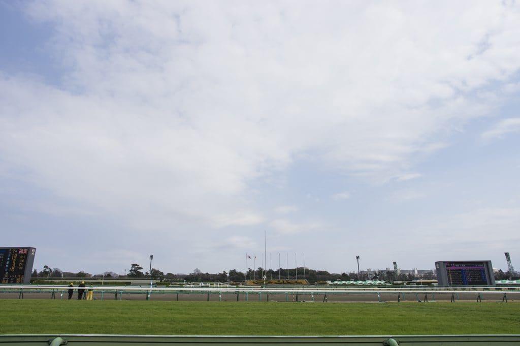 競馬場 ターフ